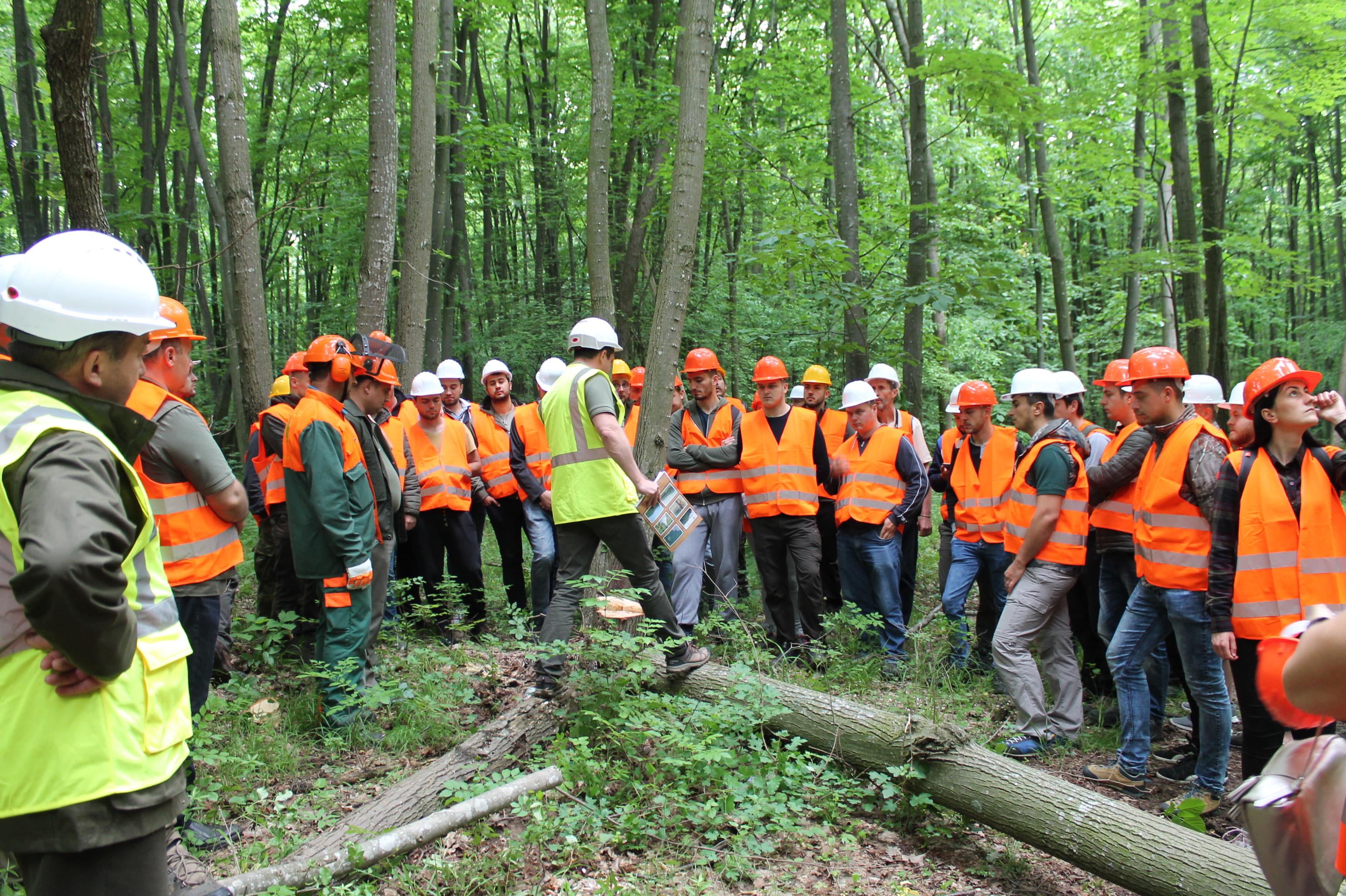 Vizită de studii a studenților Facultății de Silvicultură și Exploatări Forestiere din Brașov